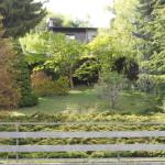 Villetta Premeno giardino